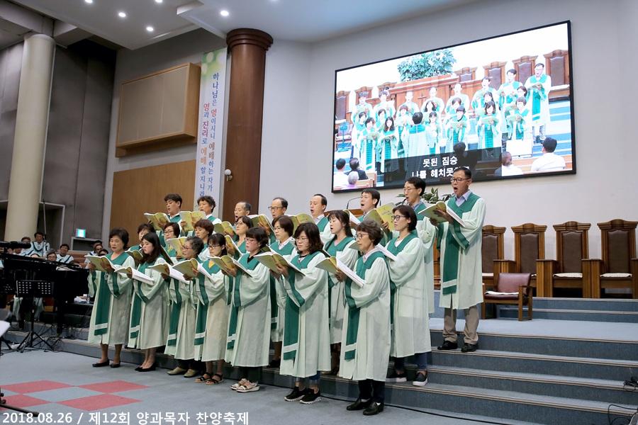 20180826제12회양과목자찬양축제 (22)p.jpg