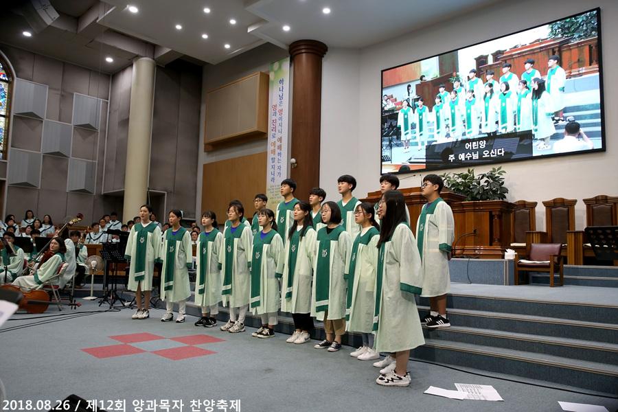 20180826제12회양과목자찬양축제 (11)p.jpg